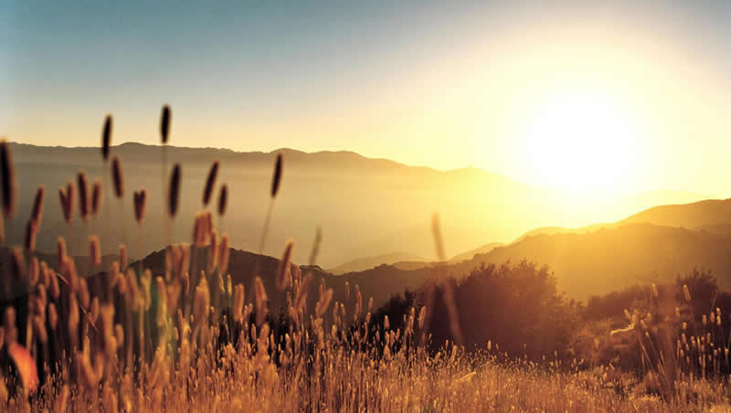 ¡Buenos días! Oración dando gracias por otro día más de vida